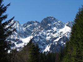 On the way to Morskie Oko by Woolfred