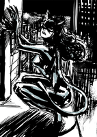 Catwoman - Sketch by Botonet