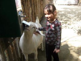 Aubri and Goat 2 by my-dog-corky
