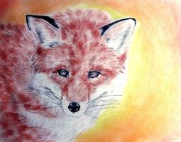 Vulpes vulpes by CpointSpoint