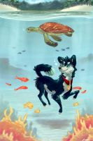 Tropical Dive by LoupDeMort