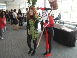 Poison Ivy and Harley Quinn cosplay by DragonFly188
