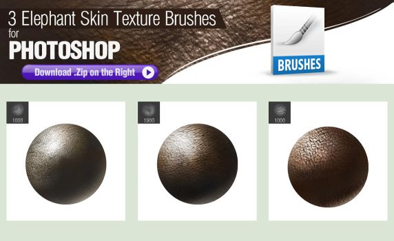 3 Photoshop Brushes for Painting Elephant Skin by pixelstains