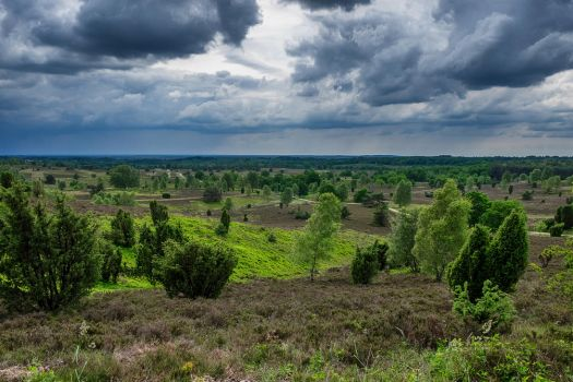 Storm over Haverbeck by eegariM