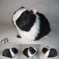 Black+White Guinea Pig Plush by Morumoto