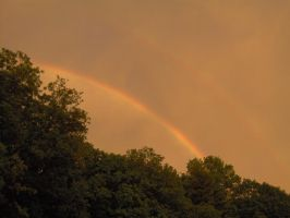 Rainbow Over Trees 01 by Geak-of-Nature