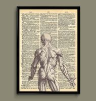 back dictionary print human by ColourInk