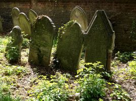 Southampton Old Cemetery 25 by OghamMoon