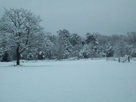 snow in east texas by ceriandshusuke