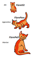 -Request- Warrior cat Oc-FlarePelt by SCARYWOLF25