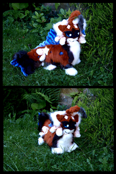 Stanley Snowshoe as plushie 2 by StanHoneyThief