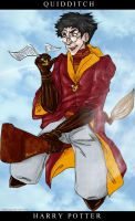 Harry Potter - Quidditch by akanai