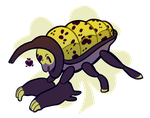 Weighted Blanket Beetle by Strontium-Chloride