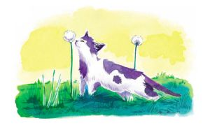Cat and a Dandelion by drkrayon