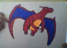 Charizard good quality by contestmanager