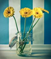 yellow flowers in a jar by mmonart