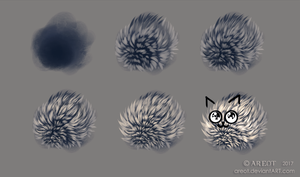 Short Fur Study by areot