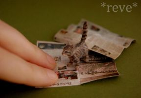 Miniature Tabby Kitten * Handmade Sculpture * by ReveMiniatures