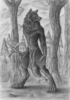 Black Wolf by Singsongwolf by Weres-United-Club