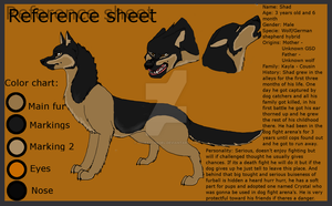 Shad's reference sheet by ZeCrazyAngel