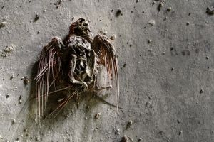 20.6.2014: Bird of Death by Suensyan