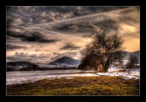 winter field by katerina-m