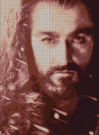 Thorin Cross Stitch Pattern sample by shingorengeki
