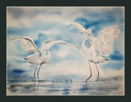 Dancing herons by stokrotas
