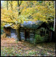 Country cabin, img. 431 by harrietsfriend