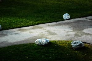 Stone and Grass by tom2strobl
