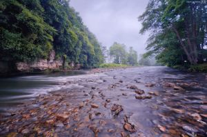 Fog in the river. by MarioGuti