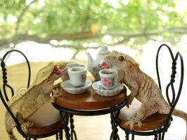 Tea Party Conversation -Lumina by styx-leagon