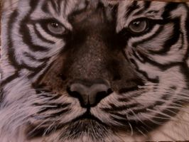 Airbrushed Tiger black and white by airbrusharthart
