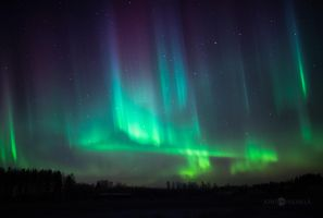 Northern Lights Of Christmas by Nitrok
