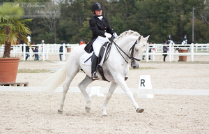 Dressage Cup_127 by CalyHoney