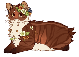 [CLOSED] Cat Adoptable Auction by nargled