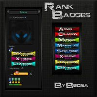 CTX-RANK-BADGES by bbosa