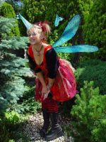 Double Dragonfly Fairy Wings by customfairywings