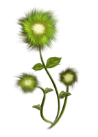 painted flower PNG by erool