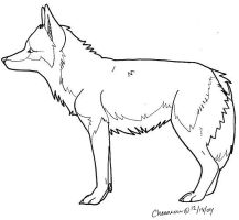 Coyote -  Free Pose by chenneoue