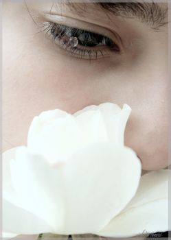 White tears by filbuster