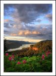 Everlasting Confluence by hikester