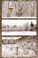 snowydrive by RobertMichael