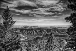 Past the Pines to Red Rock HDR BW by mjohanson