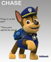 Paw Patrol Pup Chase by wolfboss22
