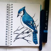Instaart - Blue Jay by Candra