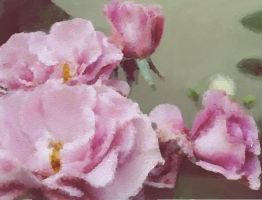 Rose Impressionism by copperphoenix