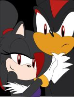Shadow and Darkness by sonicgirl313