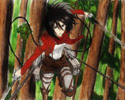 Mikasa Ackerman by screwston12
