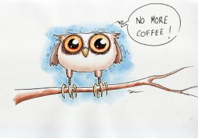 Coffee Owl by Mathieu-Larno